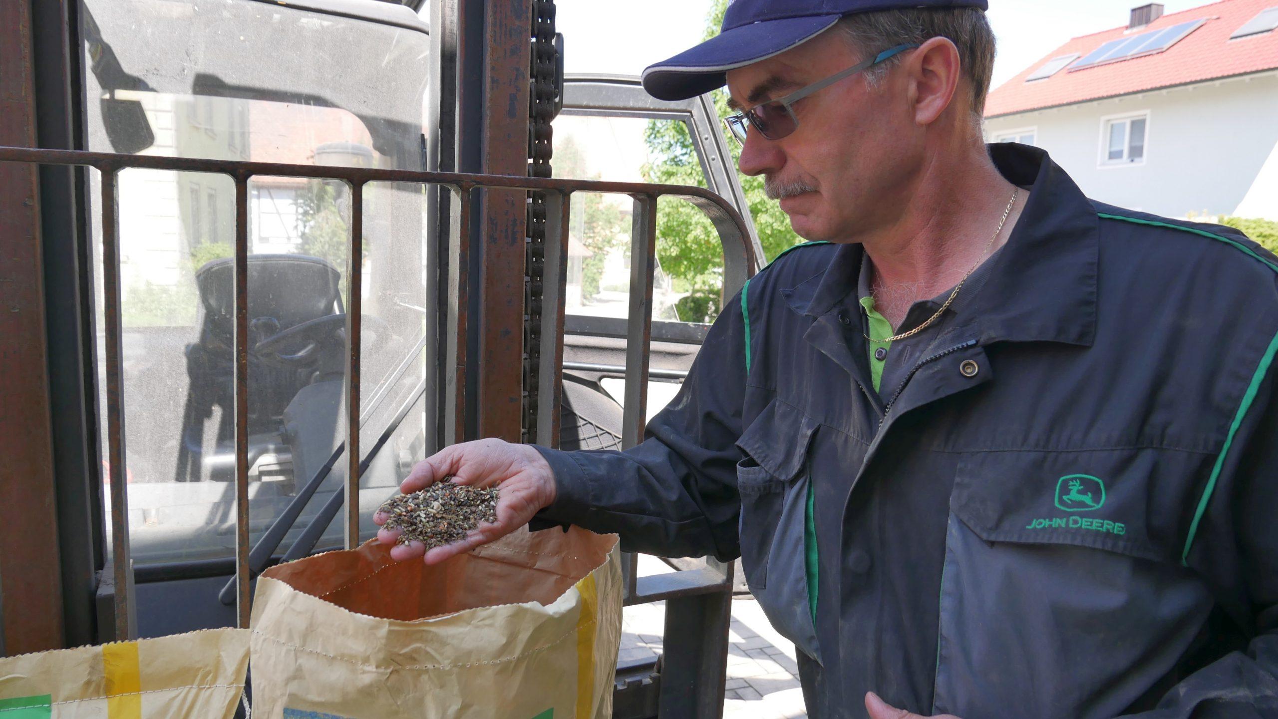 Landwirt Jürgen Pfänder begutachtet das Saatgut. (Foto: Michael Enderlein)